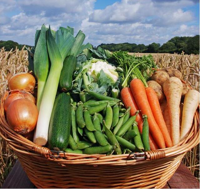 Ekologisk mat är en viktig del i miljövänlig konsumtion