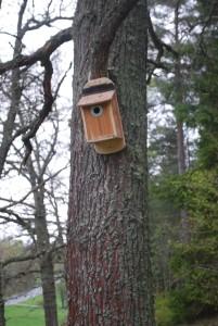 Fågelholk designad av Erik Sandström på plats vid Snåltäppan