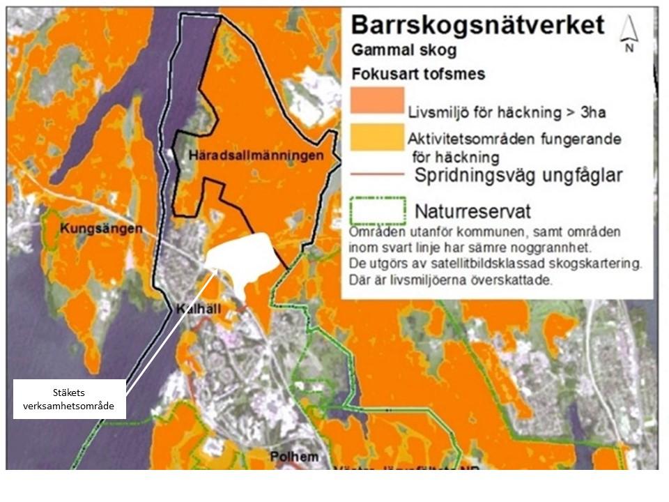 Barrskogssambandet öster det planerade verksamhetsområdet.