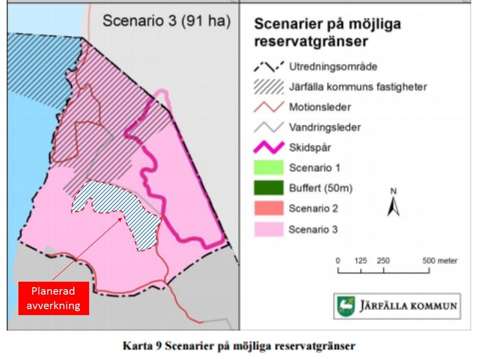 Planerad avverkning blivande reservat Ängsjö